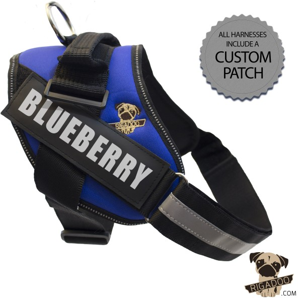 Rigadoo Dog Harness - Blueberry