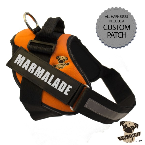 Rigadoo Dog Harness - Marmalade