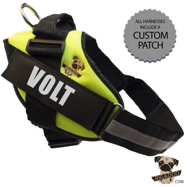 Rigadoo Dog  Harness - Volt