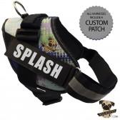 Rigadoo Dog Harness - Splash