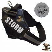 Rigadoo Dog Harness - Storm