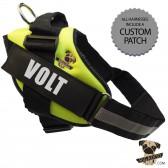 Rigadoo Dog  Harness - Volt